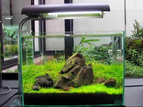 鱼缸变频水泵电路图