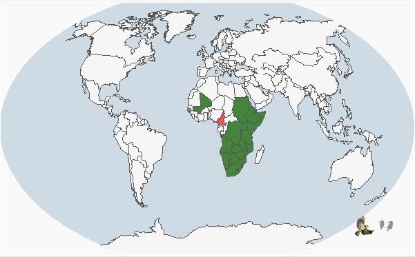 分布范围折叠 编辑本段 分布于非洲中南部地区,包括阿拉伯半岛的南部