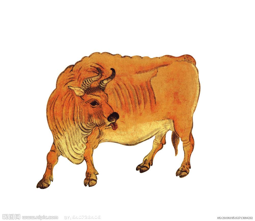 黄牛的简笔画全身